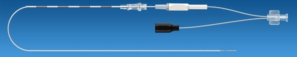 Un catetere multifunzione per peridurolisi con radiofrequenza pulsata gangliare